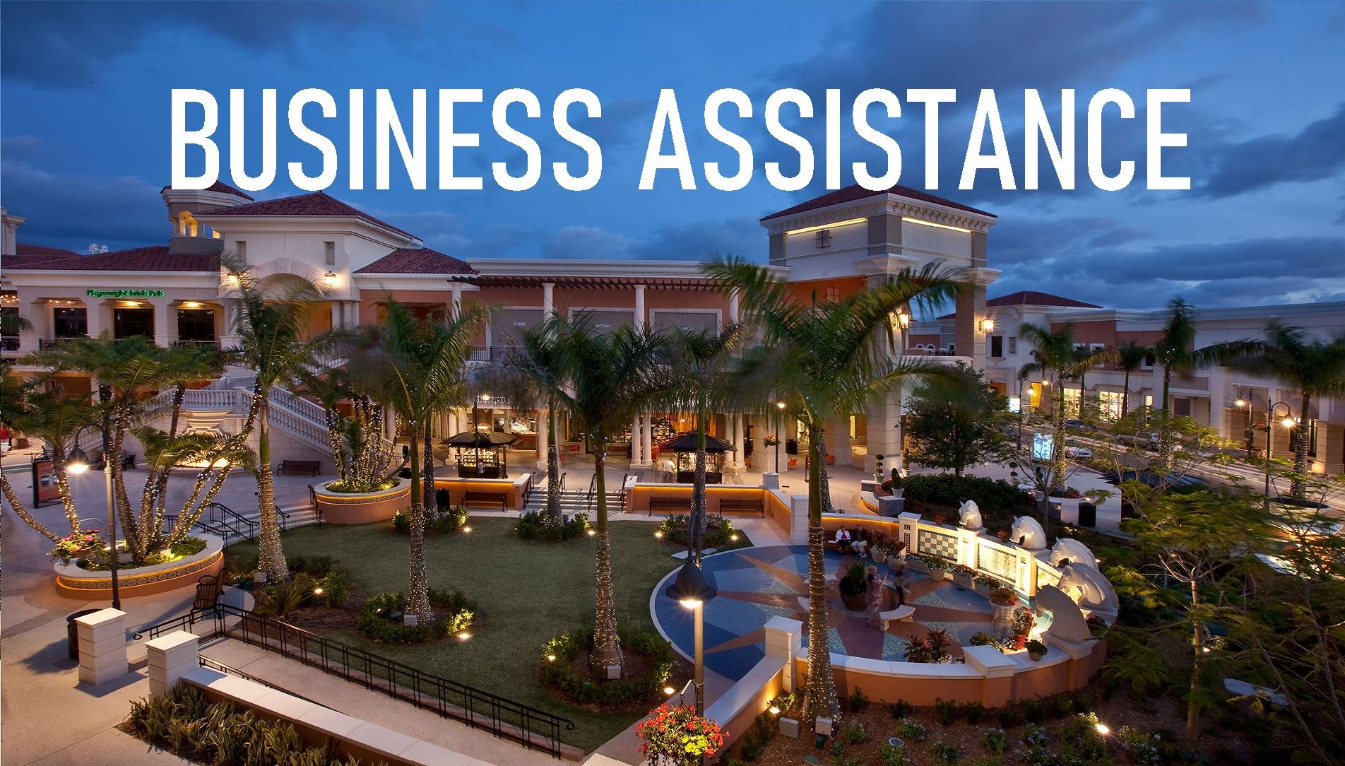 Business Assistance