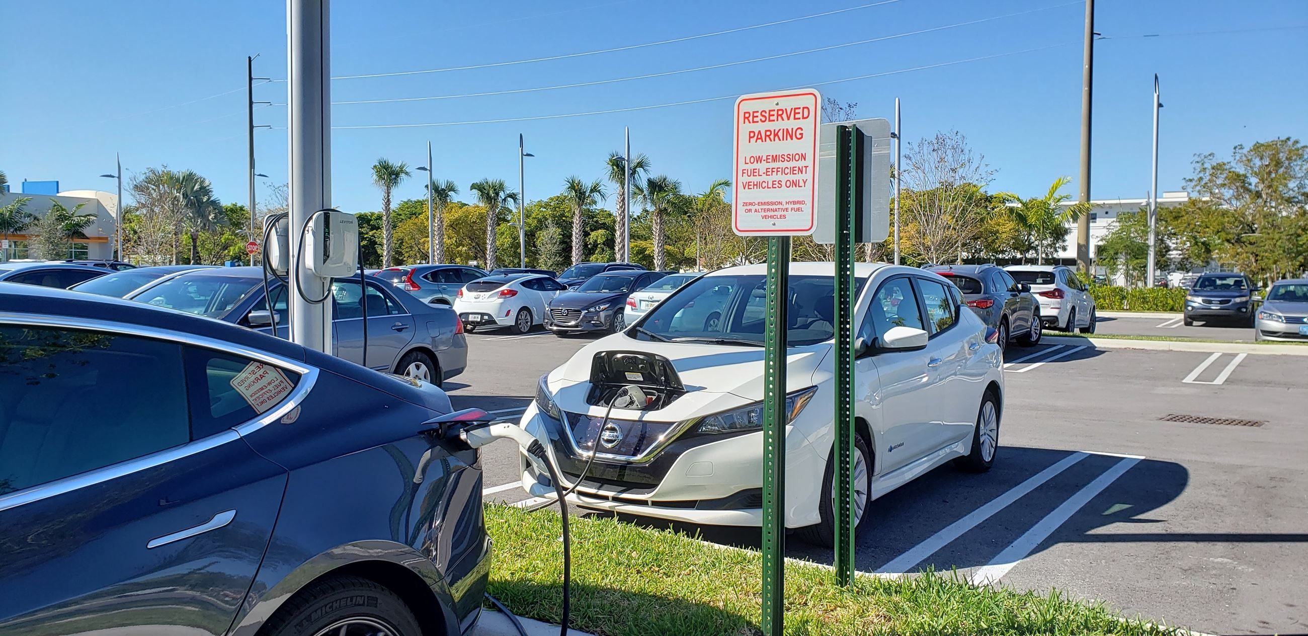 Electric vehicles plugged in to charge
